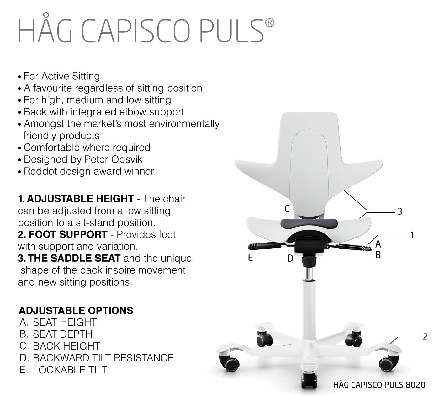 Capisco Puls-Feature-ENGLISH-infographic