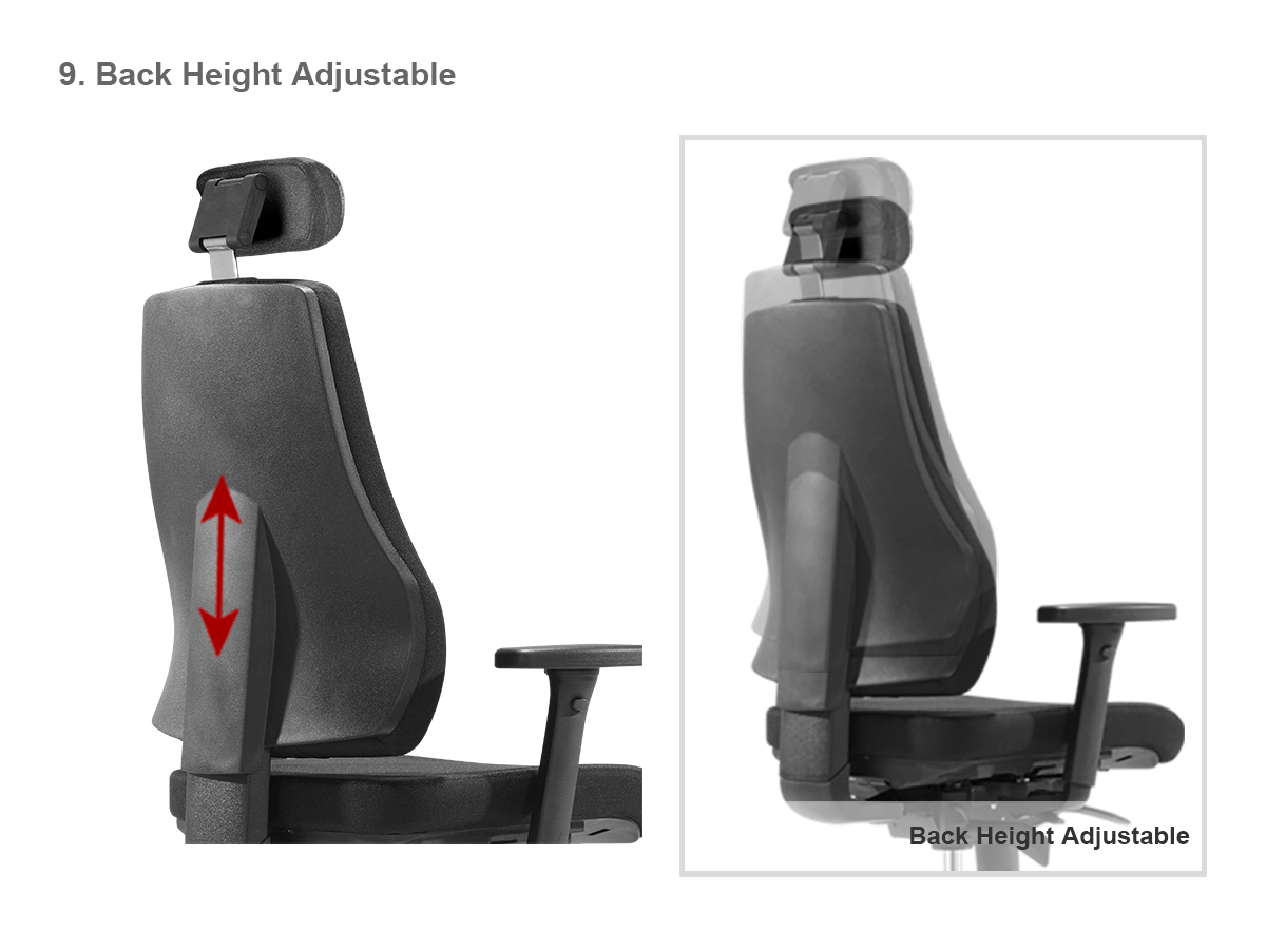 Sigma H-Back heightadjust-ENG-infographic