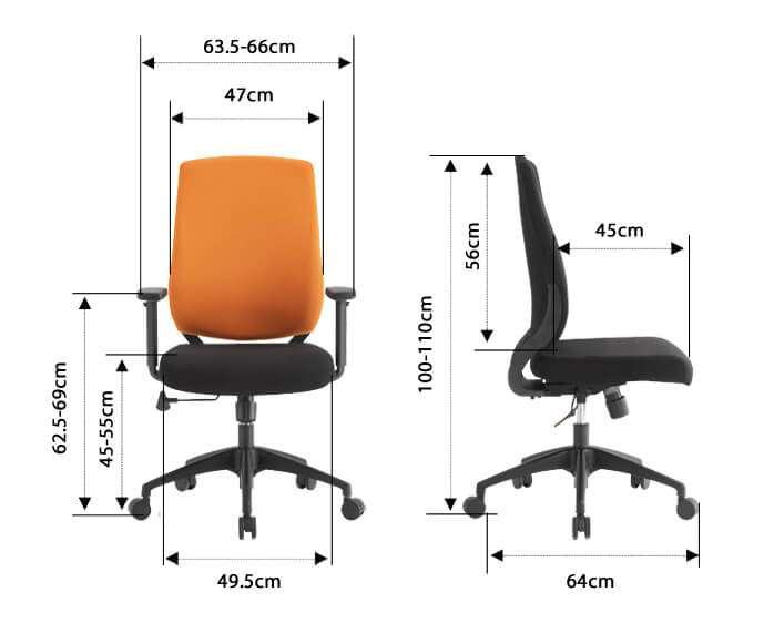 Elegant-size-infographic